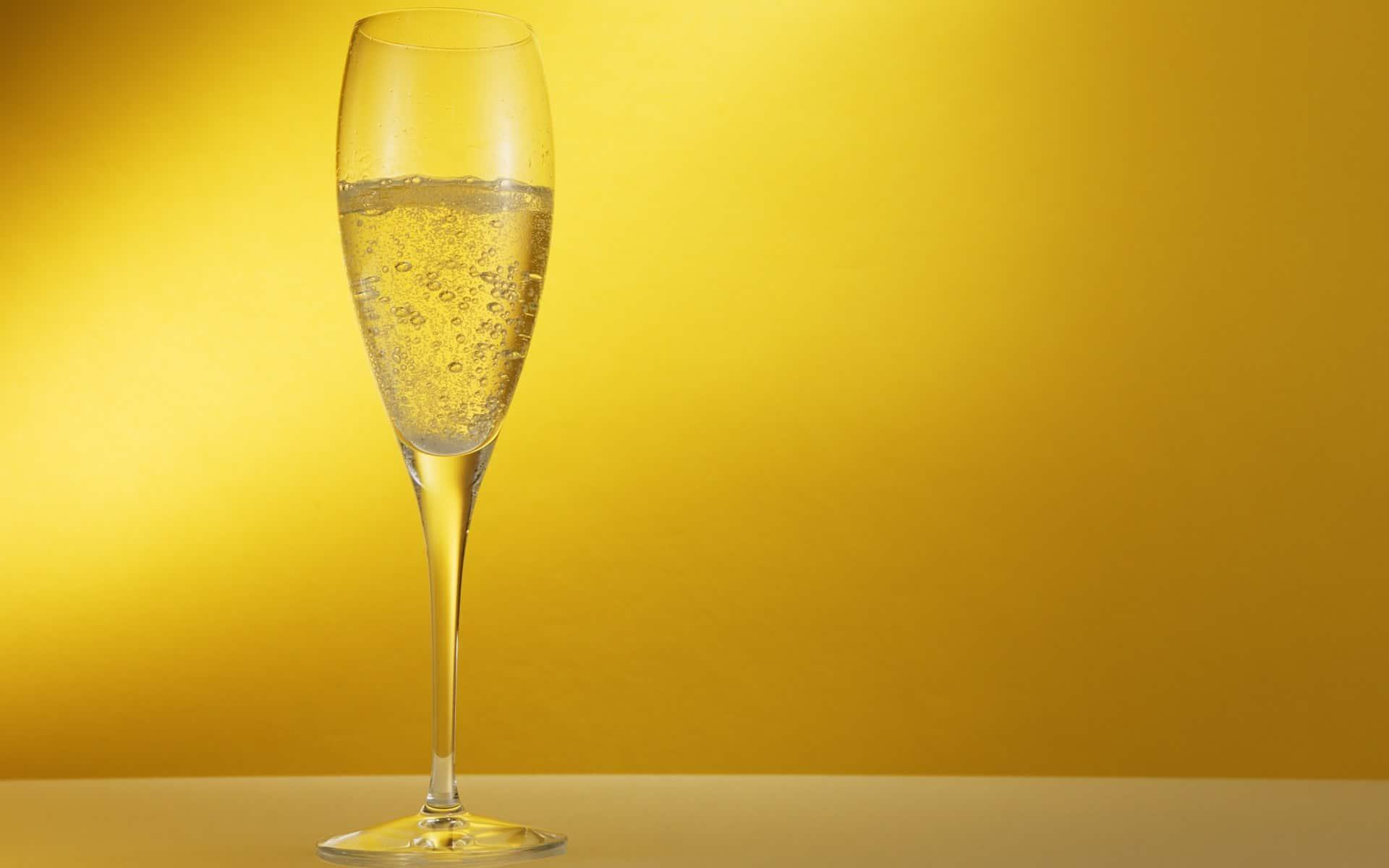 Champagne de producteur : Le terroir sinon rien